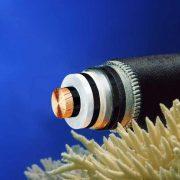 IRENA: τι συζητήθηκε για ηλεκτρικές διασυνδέσεις, EastMed και λιγνίτες